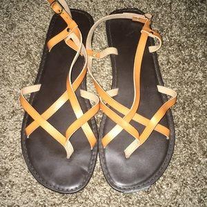 Report sandals!